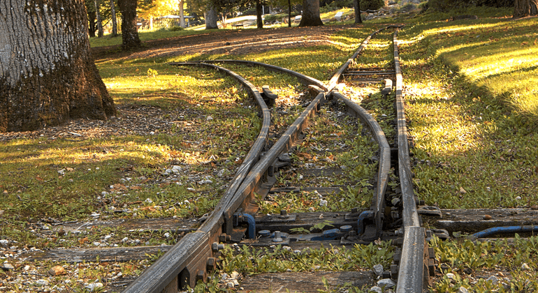 Forked rail road tracks
